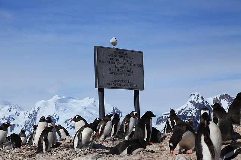 File:Waterboat Point, Antarctica (6122949970).jpg