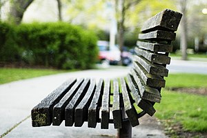 A wooden park bench from Scoville Park, Oak Pa...