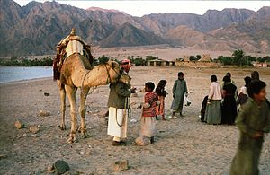 English: Bedouins in the the Sinai desert 1981...