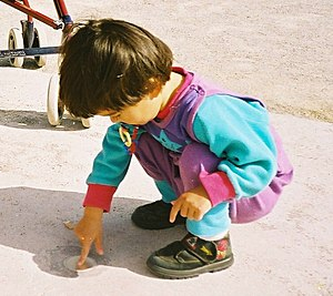 Young child playing at ease in a squatting pos...
