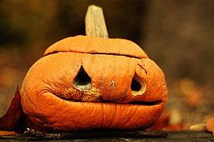 English: A wrinkly jack-o'-lantern