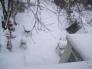 Snow openphoto