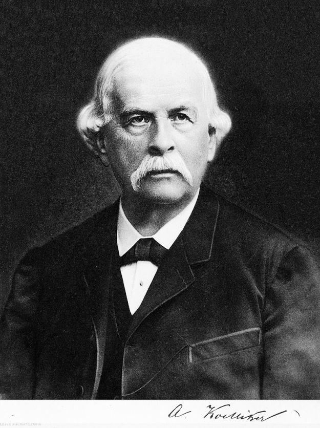Albert von Kölliker