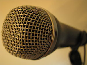 English: The microphone for the video game The...