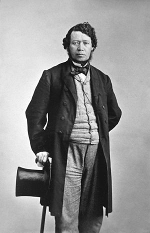 English: Thomas D'Arcy McGee