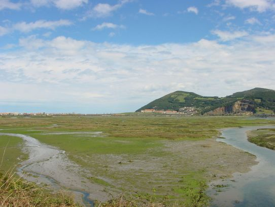 Resultado de imagen de parque natural de las marismas de laredo