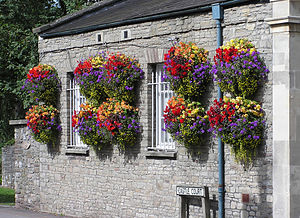 Hanging baskets in Thornbury, South Gloucester...