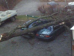 Car accident omen
