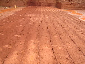 Laterite bricks quarry in koovery. Prepared fo...