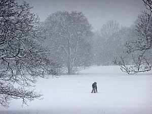 English: Oakwood Park, London N14 - snow storm...