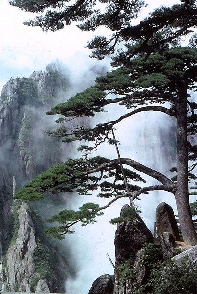 File:Huangshan Yingkesong.jpg