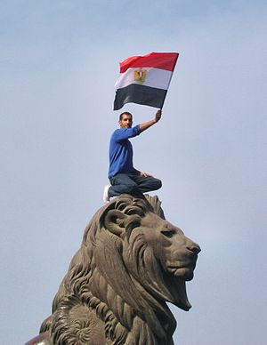 A picture of an Egyptian protester during the ...