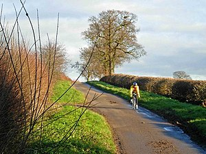 English: Cycling to Upton A cyclist descends a...