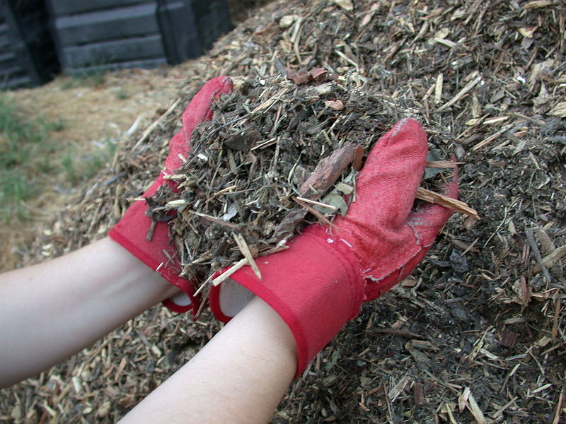 Mulch shredded yard waste