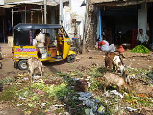 Vegetable waste and garbage being dumped in a ...