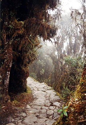 Much of the trail is of original Incan constru...