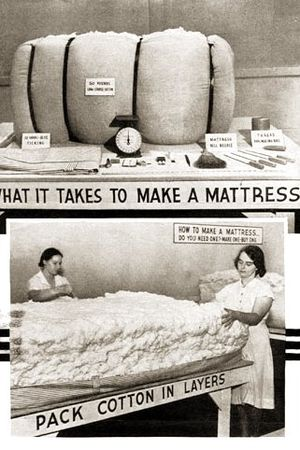 Photo On A 1940 Usda Circular Promoting Home Production Of Cotton Mattresses