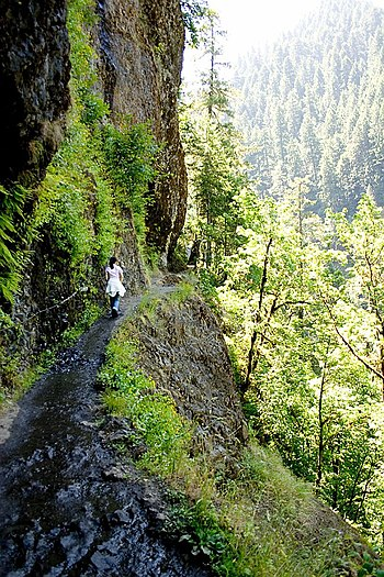 English: Hiking at Eagle Creek (Multnomah Coun...