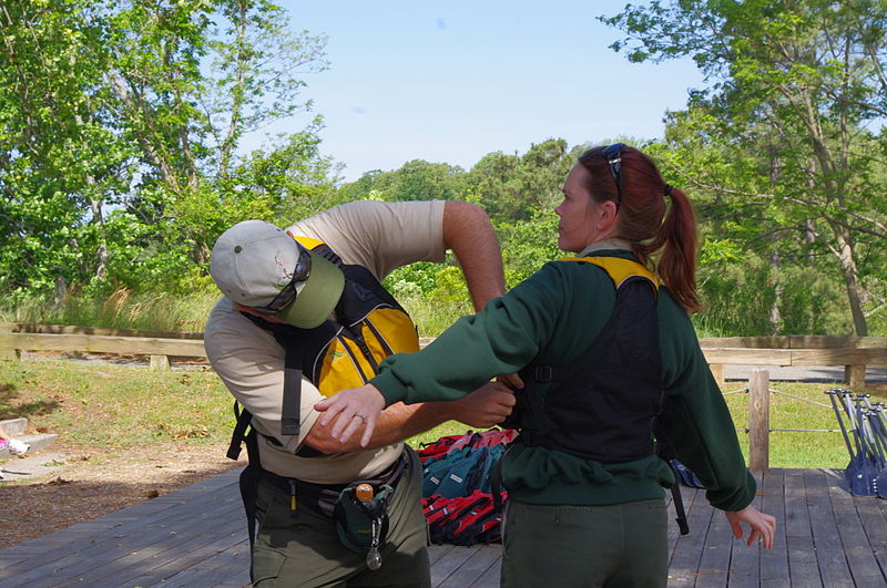 File:How to adjust a PFD (7165823798).jpg