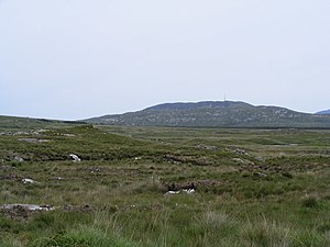 English: Looking over the bog