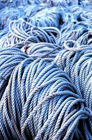 English: Coils of rope. Image ID: fish1091, Fi...
