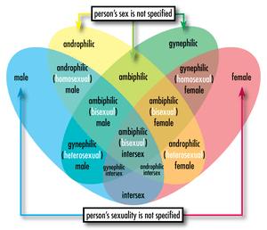 Heterosexuality homosexuality scale