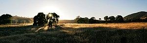 Dawn at Swifts Creek, Victoria, Australia
