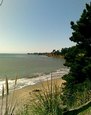 English: New Brighton State Beach near Santa C...