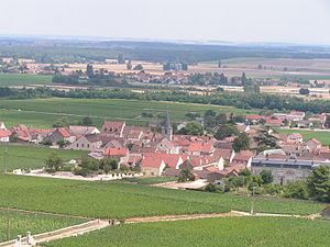 Vosne-Romanée, célèbre petit village vinicole ...