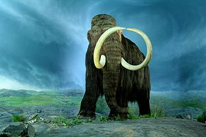 The Woolly Mammoth at the Royal BC Museum, Vic...