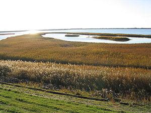 Rantum Bassin, at Sylt.