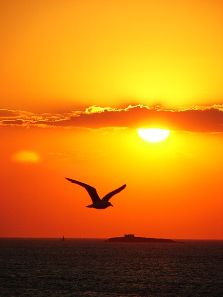 File:Sunset ada 02230.jpg