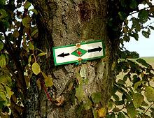 Die rote Hagebutte vor grüner Raute markiert den Gäurandweg.