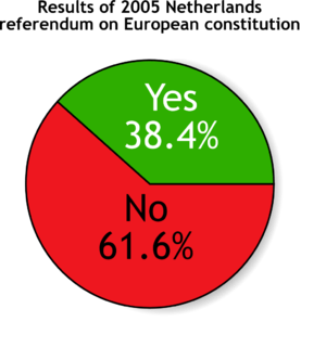 European constitution referendum