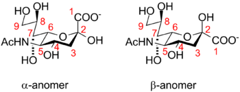 English: Anomeric configurations of Neu5Ac and...