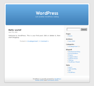 A screenshot of the default WordPress theme.
