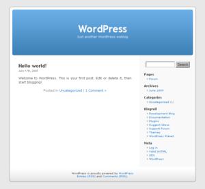 A screenshot of the default WordPress theme.