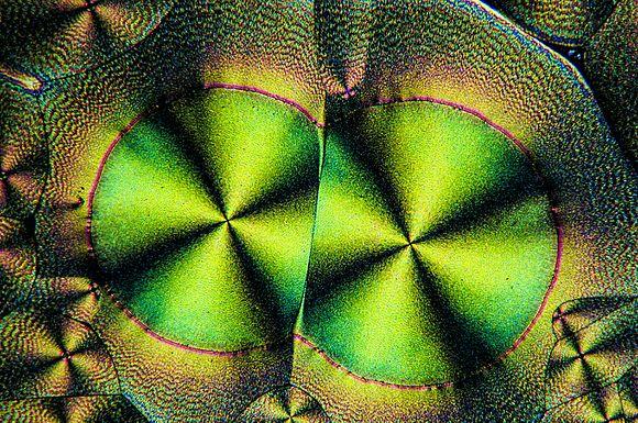 Ascorbinsäure in polarisiertem Licht 4.jpg