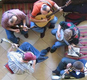Bluegrass artists use a variety of stringed in...