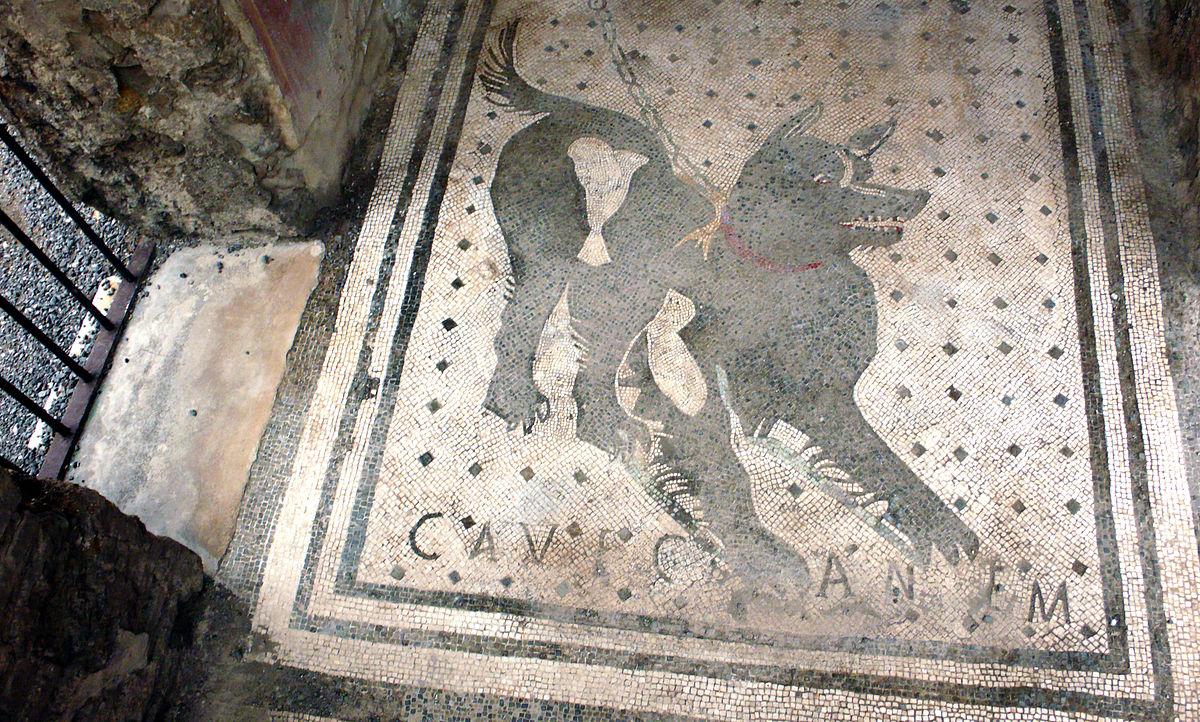 Cave Canem Wikipedia Wolna Encyklopedia