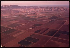 AERIAL VIEW OF OXNARD PLAIN, A PRIME AGRICULTU...