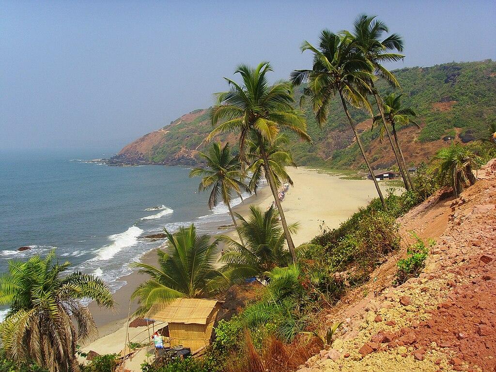Arambol beach 2009
