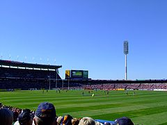 Image Result For Chad Wingard