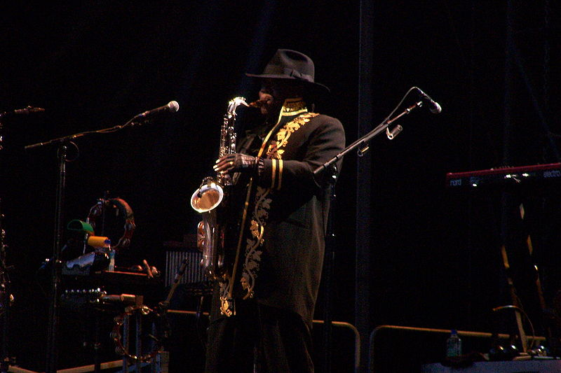 File:Clarence-Clemons.jpg