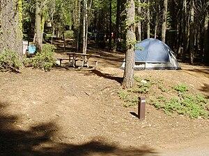 Crane Flat Campground, Site 503