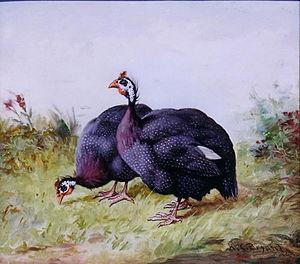 """English: """"Guinea Fowl"""", oil, 28 x 30cms"""