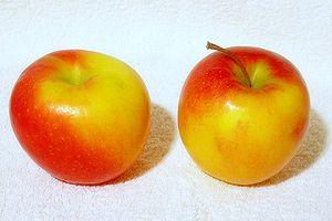 Jazz (apple)