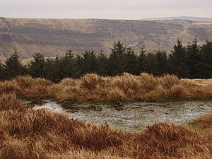 Stagnant Pool Above Alport Dale On the moorlan...