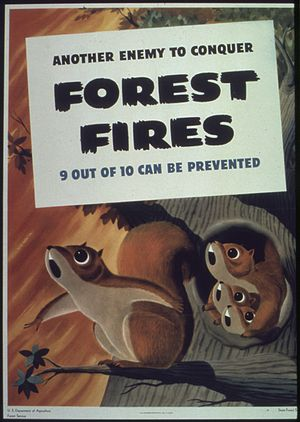 """""""Another enemy to conquer forest fires&qu..."""