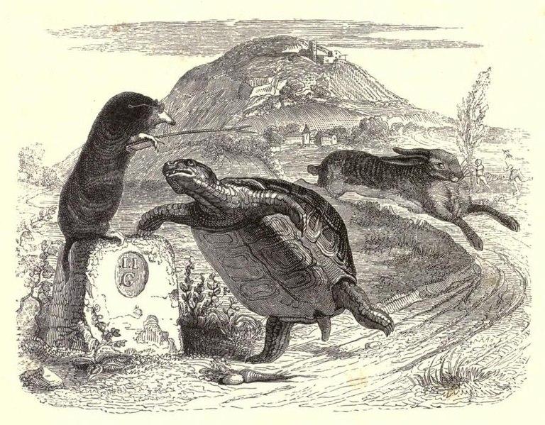 File:Grandville tortoise.jpg
